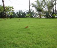 Rancho Invierno 2006